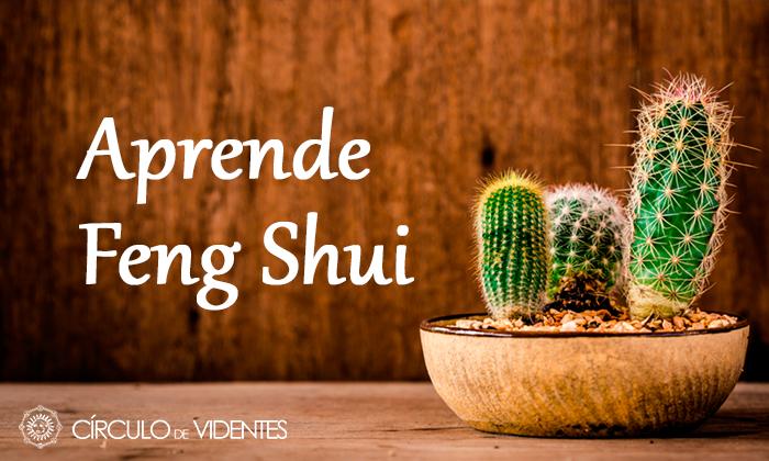 Aprende Feng Shui